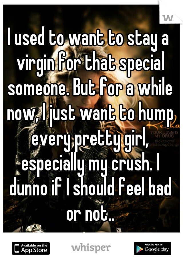 I used to want to stay a virgin for that special someone. But for a while now, I just want to hump every pretty girl, especially my crush. I dunno if I should feel bad or not..