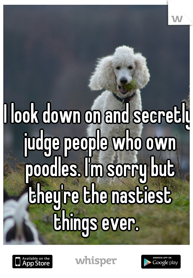 I look down on and secretly judge people who own poodles. I'm sorry but they're the nastiest things ever.
