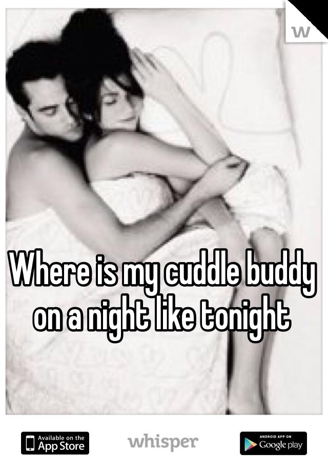 Where is my cuddle buddy on a night like tonight