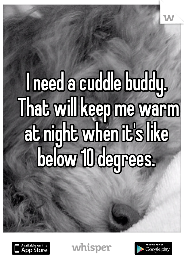 I need a cuddle buddy.  That will keep me warm at night when it's like below 10 degrees.