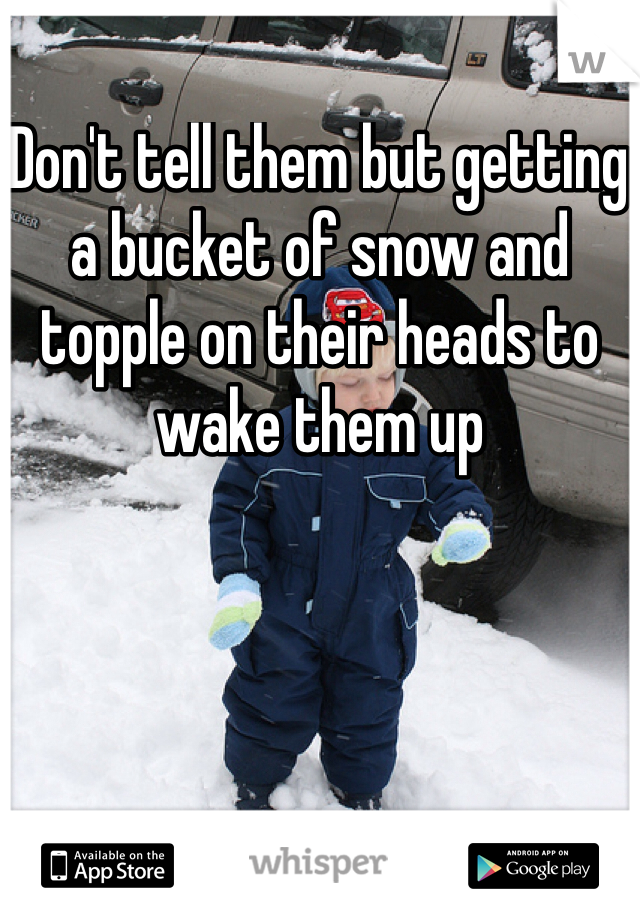 Don't tell them but getting a bucket of snow and topple on their heads to wake them up