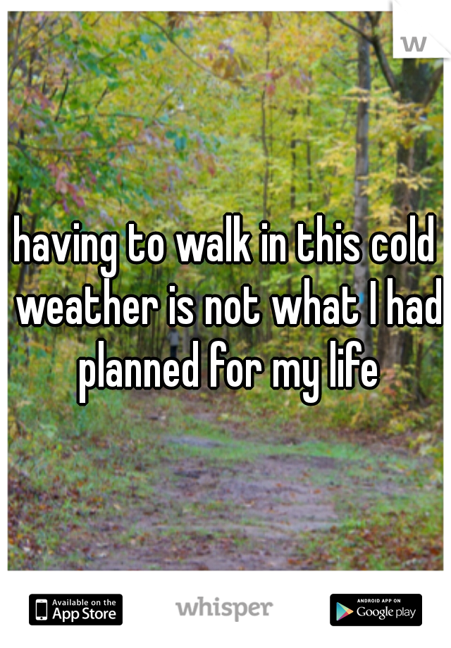 having to walk in this cold weather is not what I had planned for my life