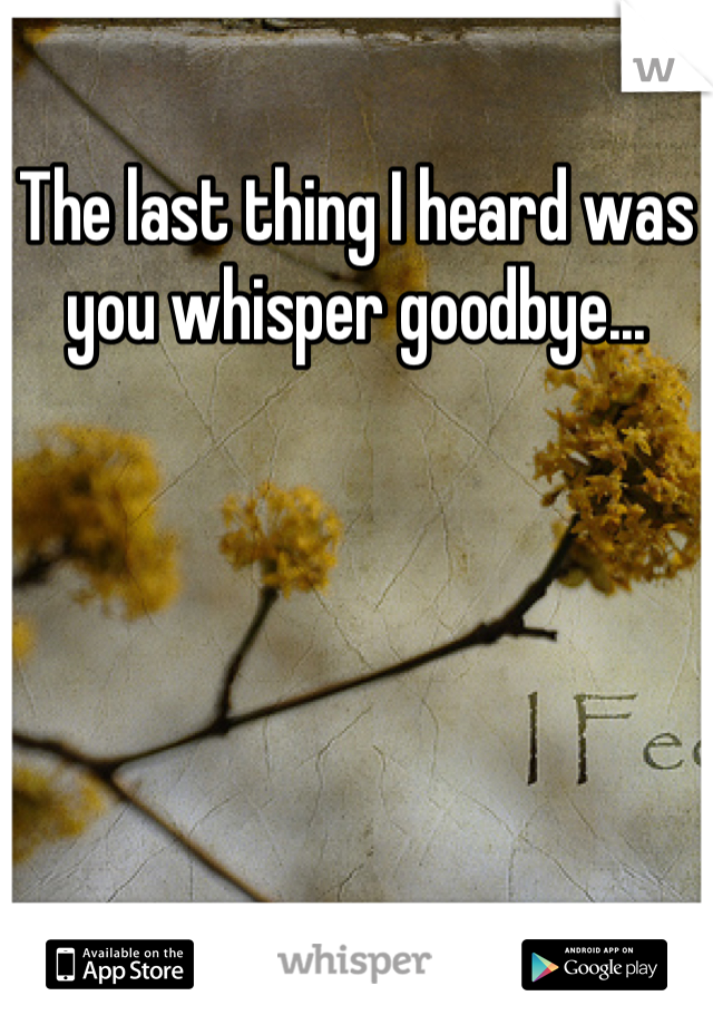 The last thing I heard was you whisper goodbye...