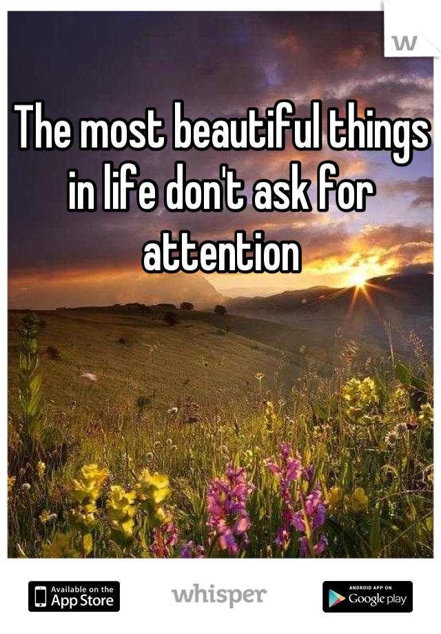 The most beautiful things in life don't ask for attention