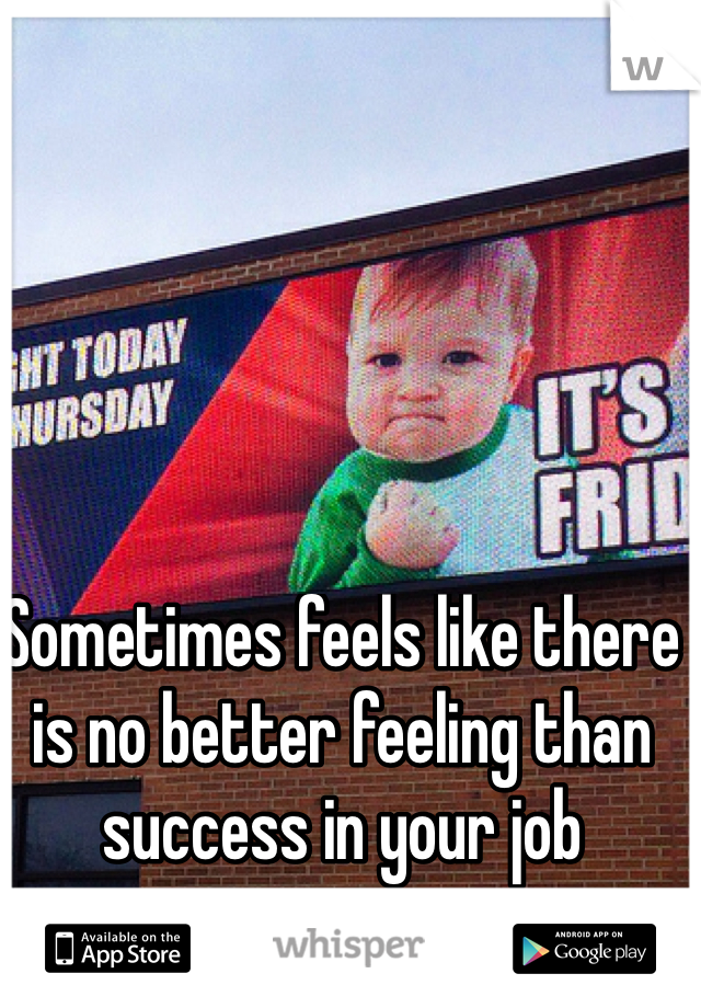 Sometimes feels like there is no better feeling than success in your job
