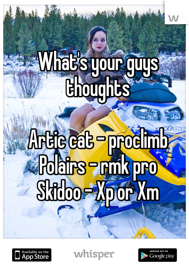 What's your guys thoughts   Artic cat - proclimb Polairs - rmk pro Skidoo - Xp or Xm
