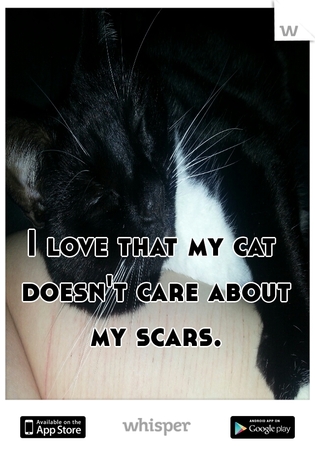I love that my cat doesn't care about my scars.