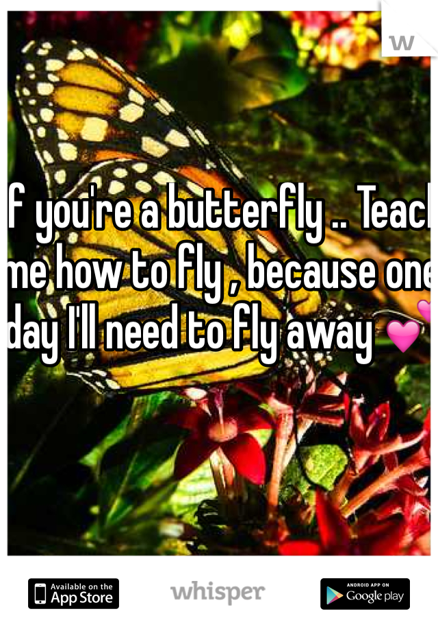 If you're a butterfly .. Teach me how to fly , because one day I'll need to fly away 💕