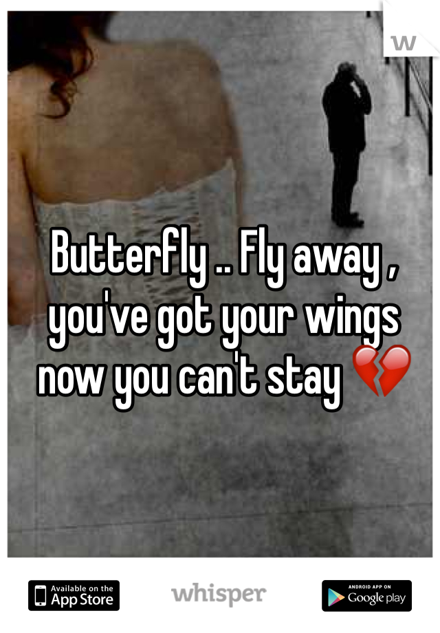 Butterfly .. Fly away , you've got your wings now you can't stay 💔