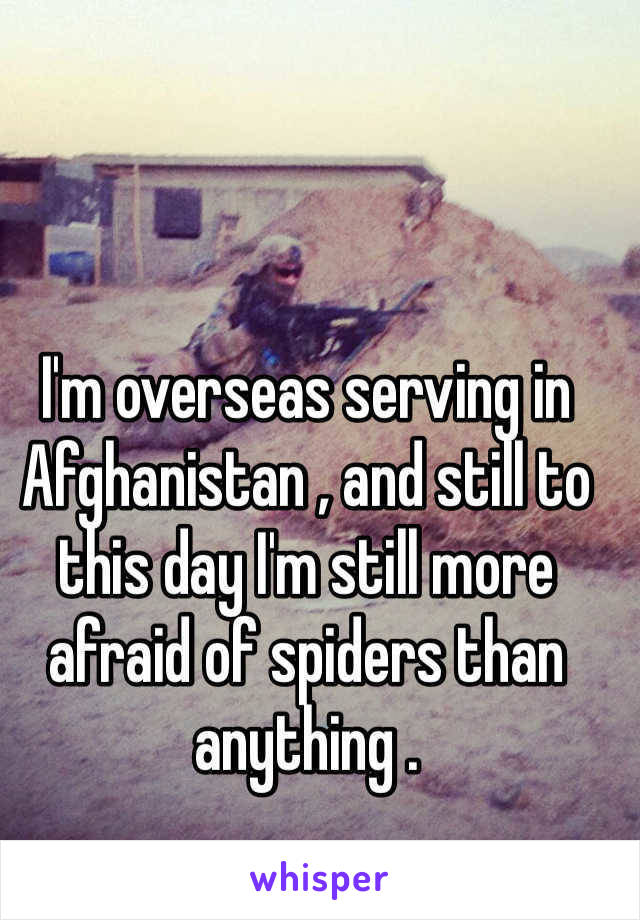 I'm overseas serving in Afghanistan , and still to this day I'm still more afraid of spiders than anything .