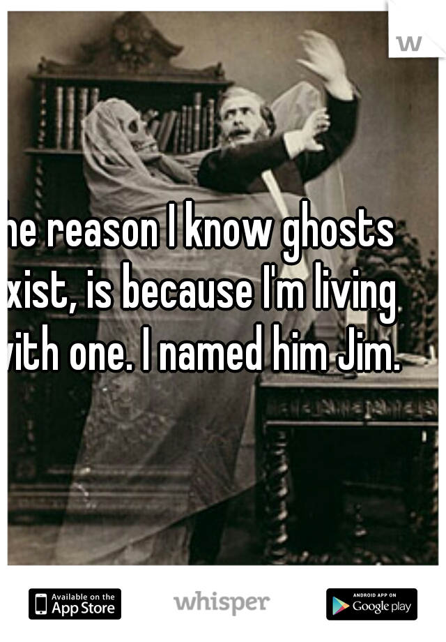 The reason I know ghosts exist, is because I'm living with one. I named him Jim.