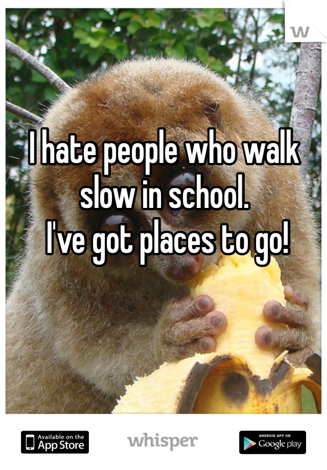 I hate people who walk slow in school.  I've got places to go!