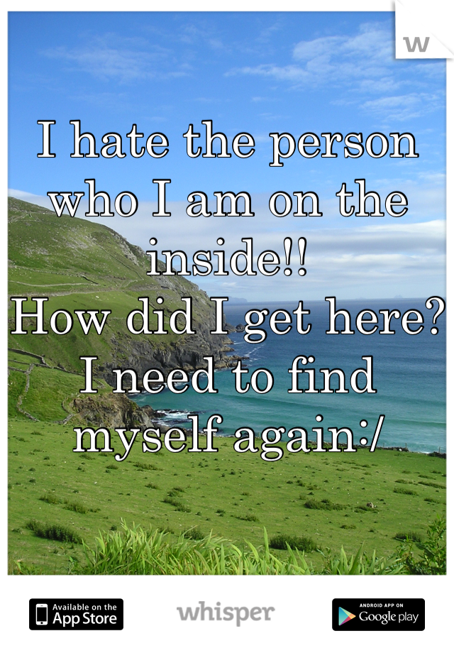 I hate the person who I am on the inside!!  How did I get here? I need to find myself again:/