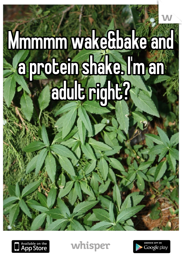 Mmmmm wake&bake and a protein shake. I'm an adult right?