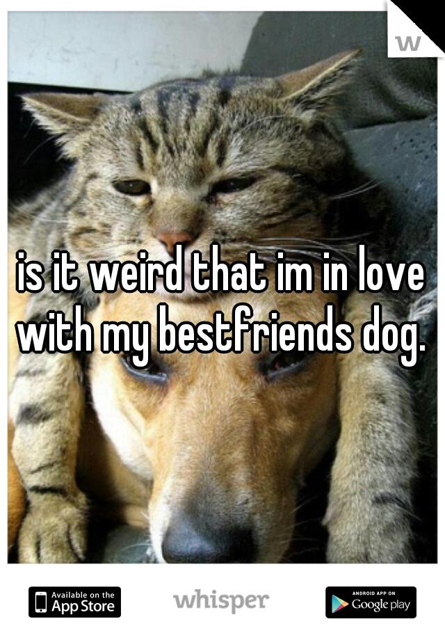 is it weird that im in love with my bestfriends dog.