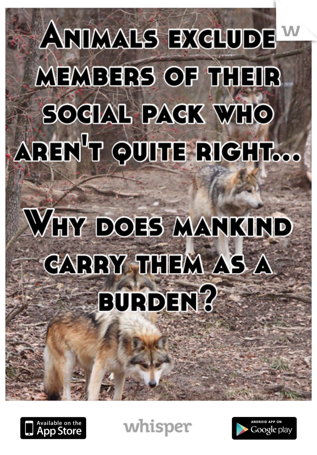 Animals exclude members of their social pack who aren't quite right...   Why does mankind carry them as a burden?