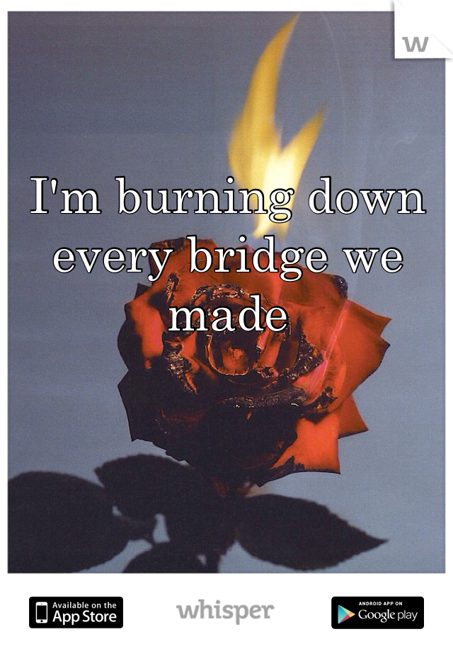 I'm burning down every bridge we made
