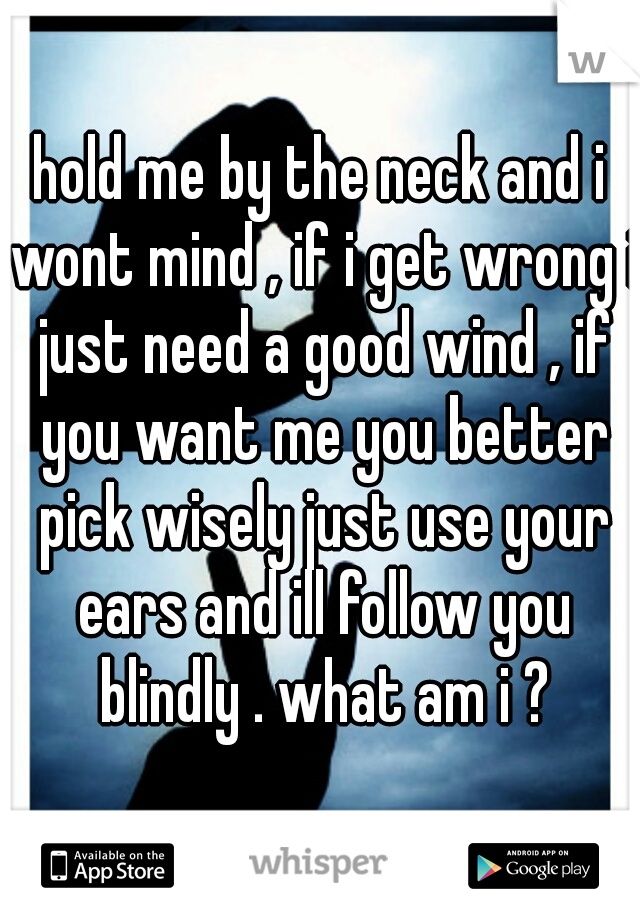 hold me by the neck and i wont mind , if i get wrong i just need a good wind , if you want me you better pick wisely just use your ears and ill follow you blindly . what am i ?