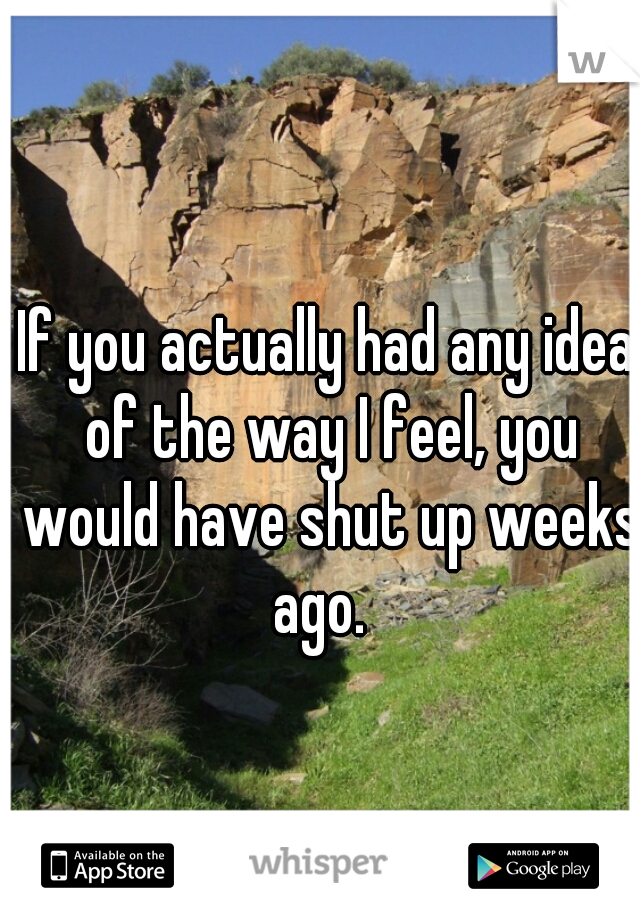 If you actually had any idea of the way I feel, you would have shut up weeks ago.