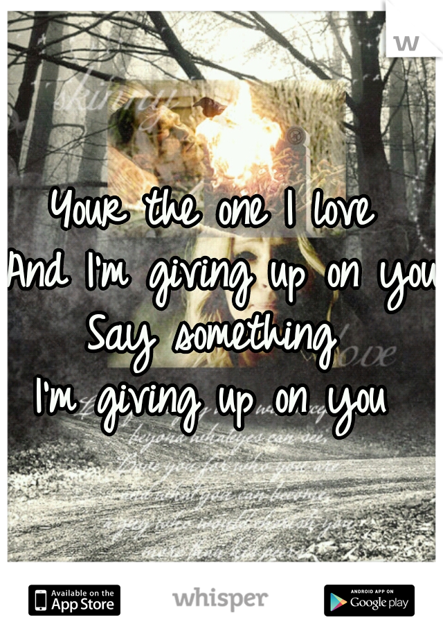 Your the one I love  And I'm giving up on you  Say something  I'm giving up on you