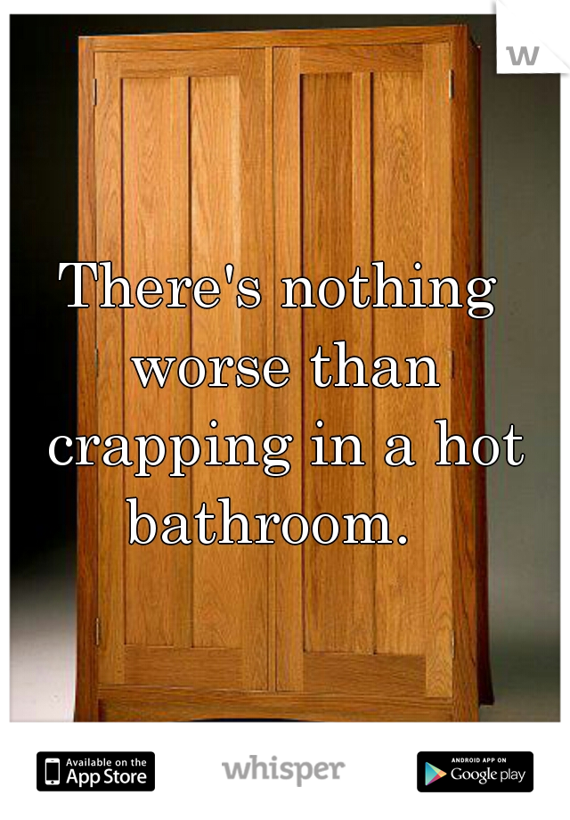 There's nothing worse than crapping in a hot bathroom.