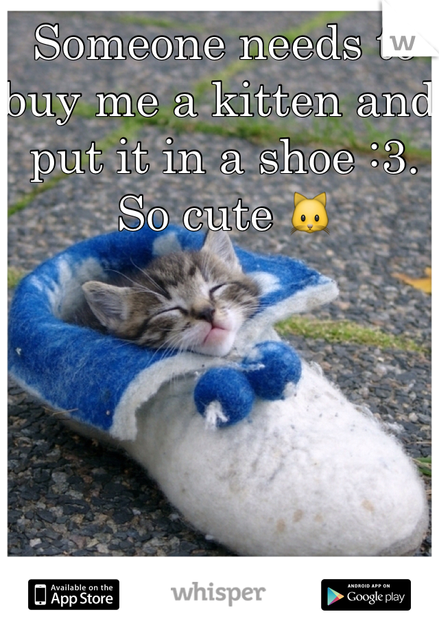 Someone needs to buy me a kitten and put it in a shoe :3. So cute 🐱