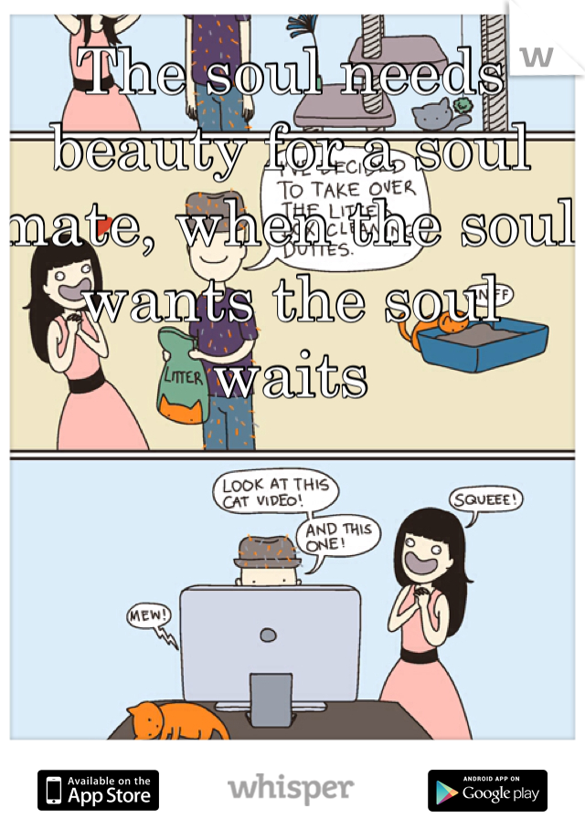 The soul needs beauty for a soul mate, when the soul wants the soul waits