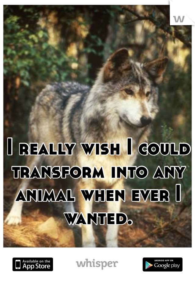 I really wish I could transform into any animal when ever I wanted.