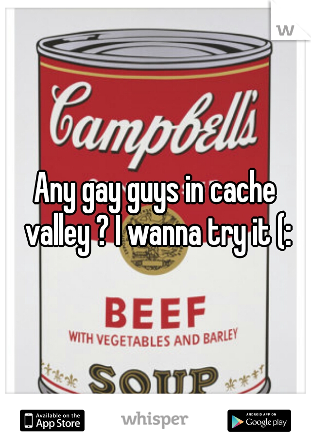 Any gay guys in cache valley ? I wanna try it (: