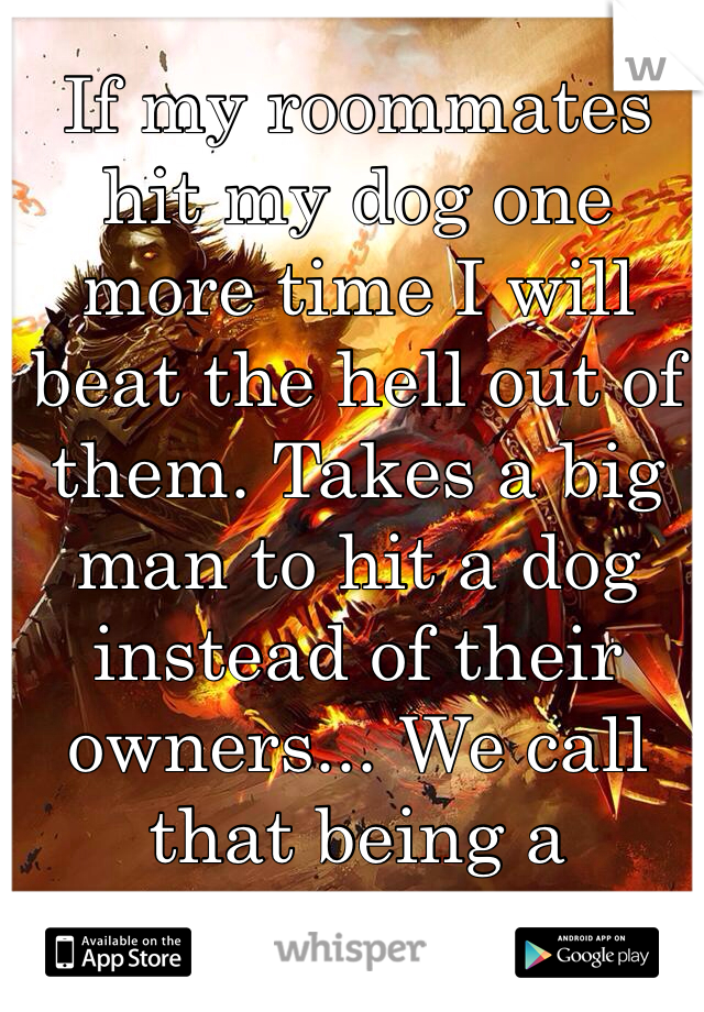 If my roommates hit my dog one more time I will beat the hell out of them. Takes a big man to hit a dog instead of their owners... We call that being a coward!