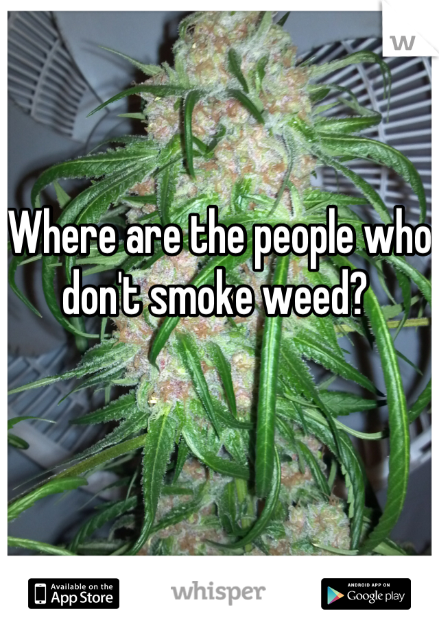 Where are the people who don't smoke weed?