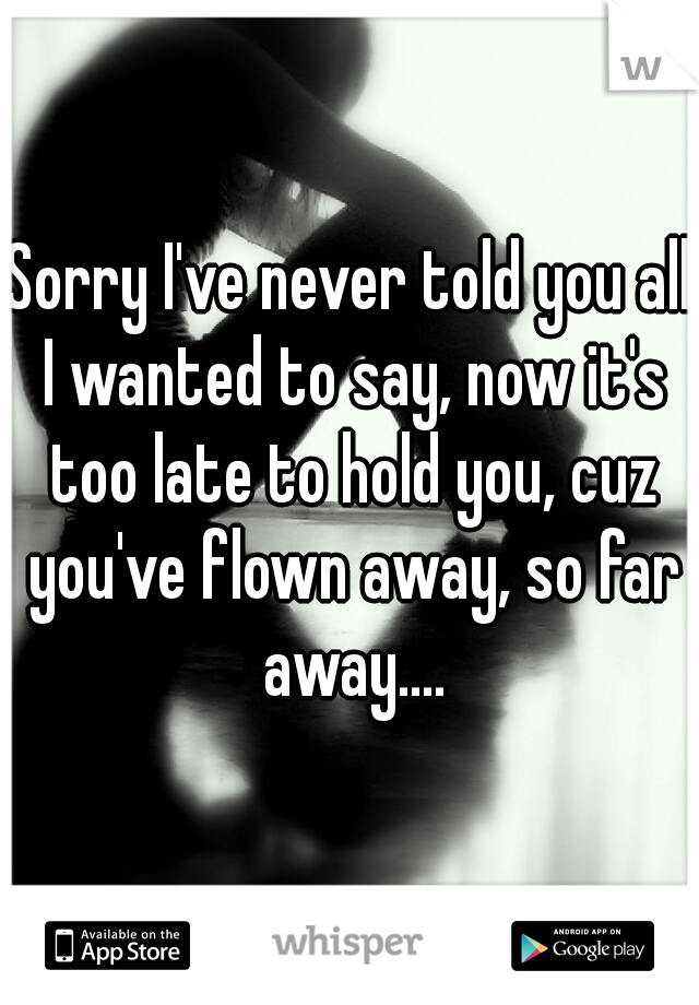 Sorry I've never told you all I wanted to say, now it's too late to hold you, cuz you've flown away, so far away....