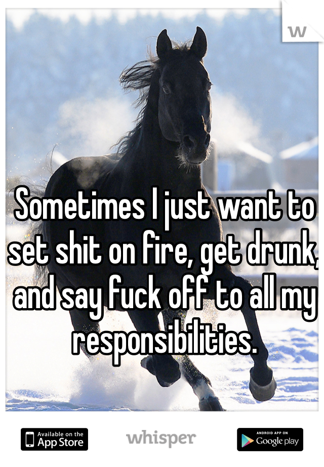 Sometimes I just want to set shit on fire, get drunk, and say fuck off to all my responsibilities.