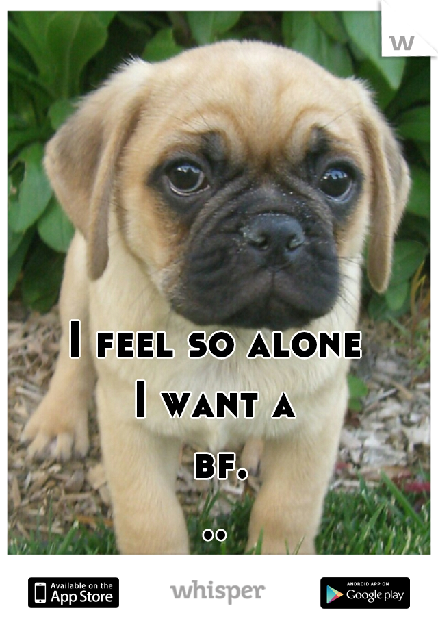 I feel so alone I want a bf... or a puppy
