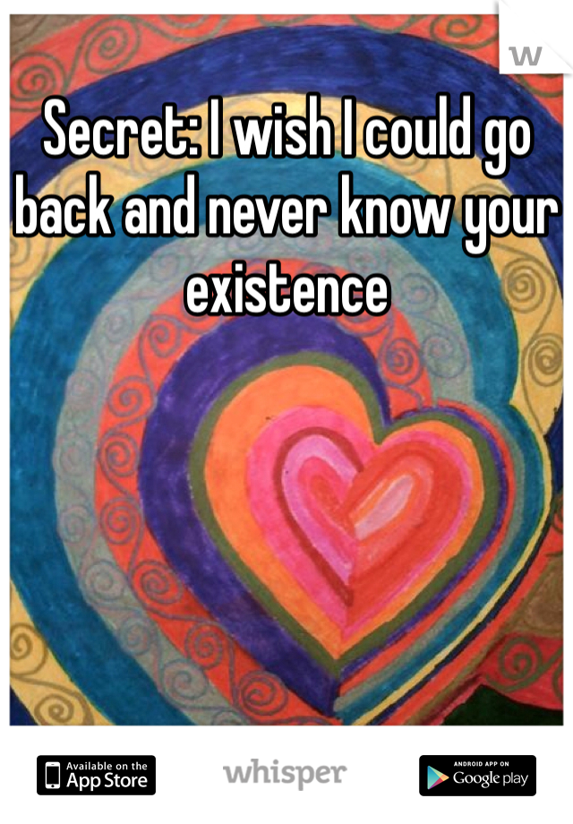 Secret: I wish I could go back and never know your existence