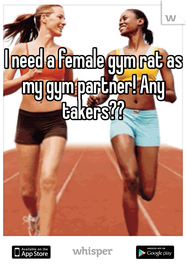 I need a female gym rat as my gym partner! Any takers??