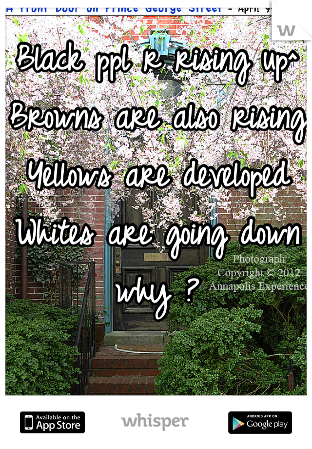 Black ppl r rising up^ Browns are also rising  Yellows are developed  Whites are going down why ?