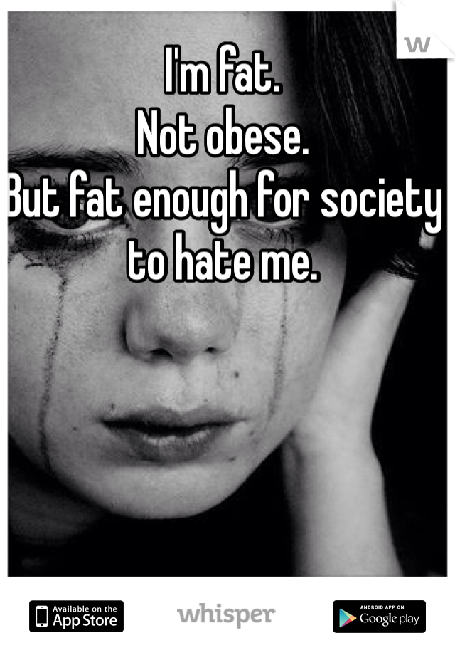 I'm fat. Not obese. But fat enough for society to hate me.