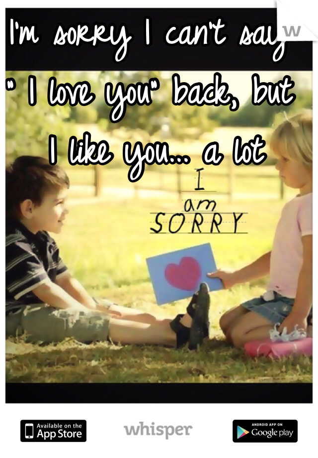"""I'm sorry I can't say """" I love you"""" back, but  I like you... a lot"""