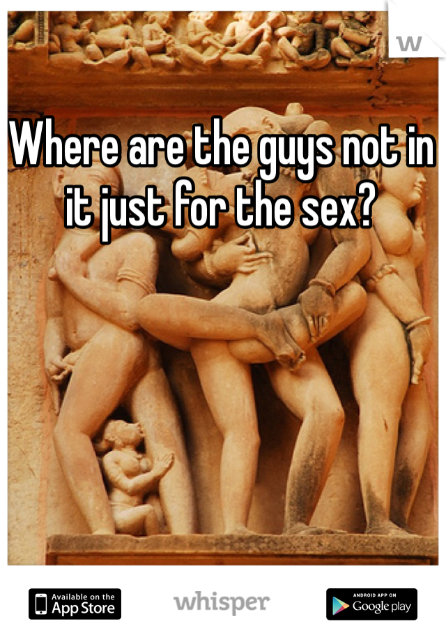 Where are the guys not in it just for the sex?
