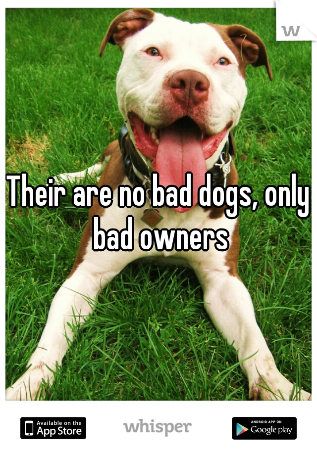 Their are no bad dogs, only bad owners