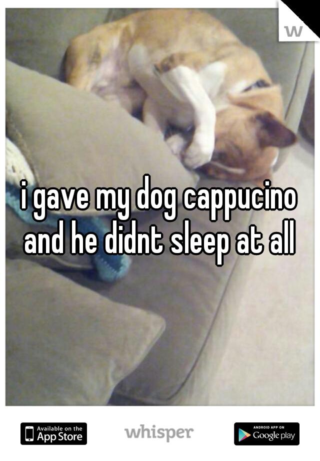 i gave my dog cappucino and he didnt sleep at all
