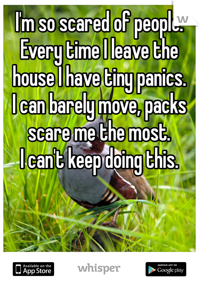 I'm so scared of people.  Every time I leave the house I have tiny panics. I can barely move, packs scare me the most.  I can't keep doing this.