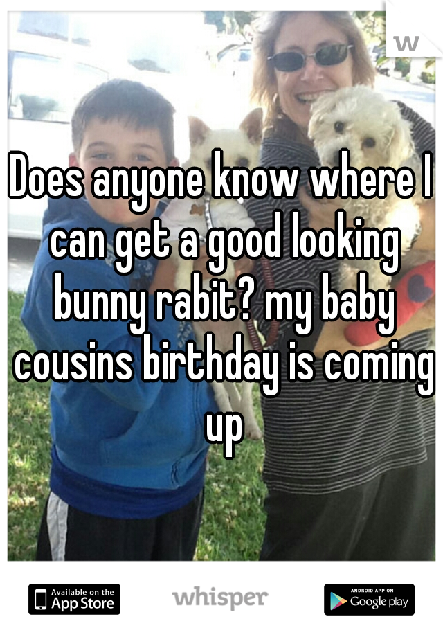 Does anyone know where I can get a good looking bunny rabit? my baby cousins birthday is coming up