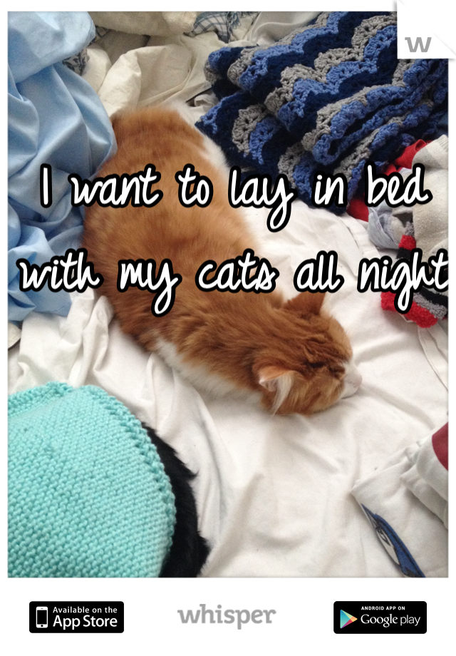 I want to lay in bed with my cats all night