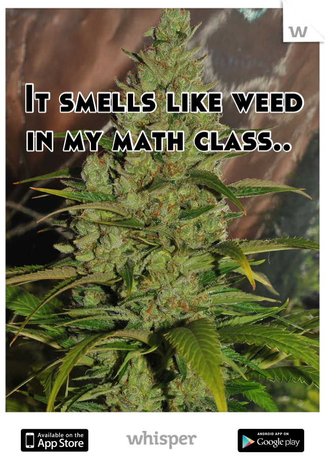 It smells like weed in my math class..