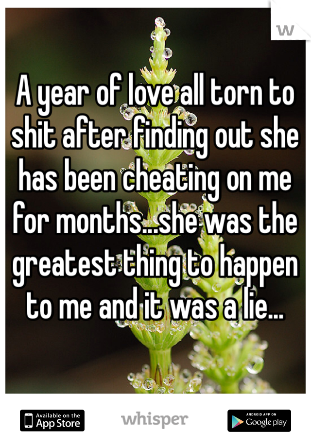A year of love all torn to shit after finding out she has been cheating on me for months...she was the greatest thing to happen to me and it was a lie...