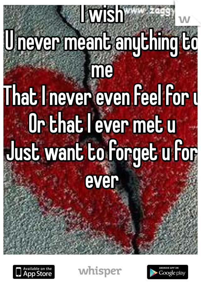 I wish  U never meant anything to me  That I never even feel for u  Or that I ever met u   Just want to forget u for ever
