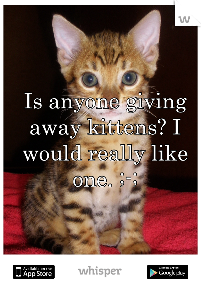 Is anyone giving away kittens? I would really like one. ;-;