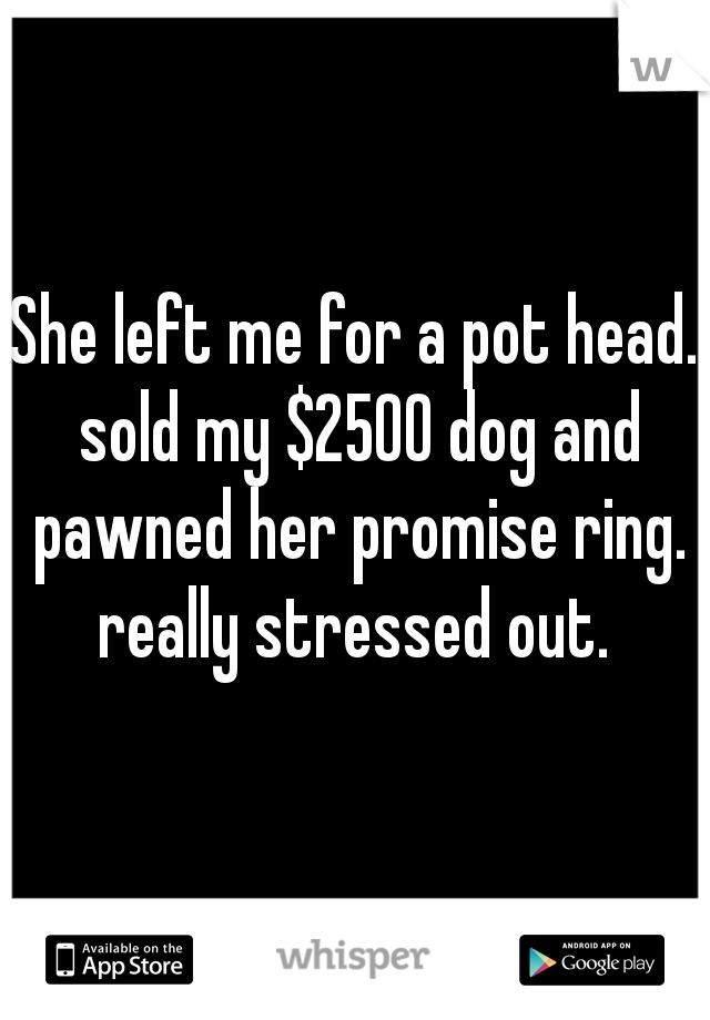 She left me for a pot head. sold my $2500 dog and pawned her promise ring. really stressed out.